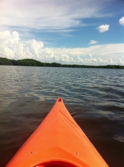 kayaking weedon island