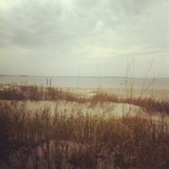 Dawn where the Savannah meets the Atlantic Ocean